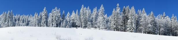 Iarna pe Arber, Bavaria