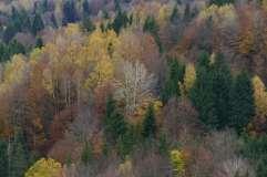 autumn_in_romania_11