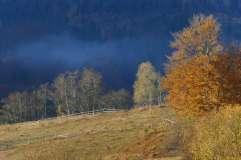 autumn_in_romania_15