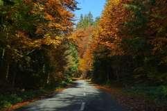 autumn_in_romania_36