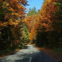 autumn_in_romania_36