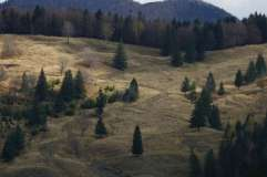 autumn_in_romania_9