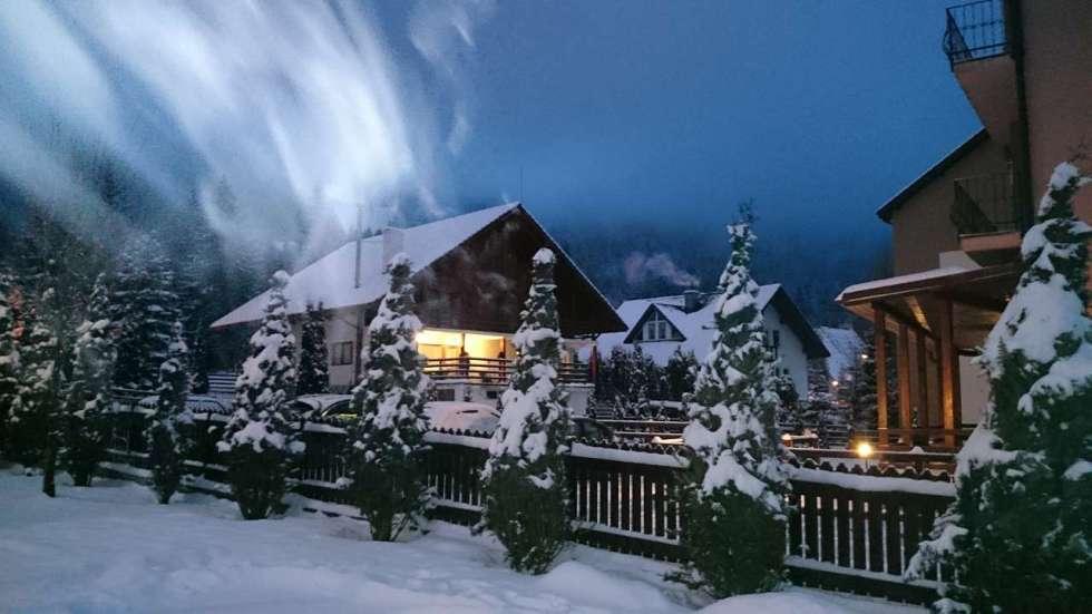 iarna_poiana